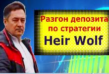 Форекс индикатор разворота рынка Heir Wolf-TF