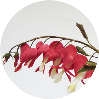 Мастер-Класс «Как создать цветок дицентры из фоамирана»