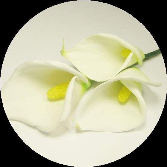 Мастер-класс Как изготовить цветок каллы из фоамирана