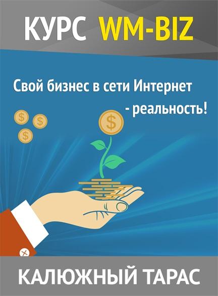 Как сделать сайт, приносящий деньги - пошаговый курс wm-biz
