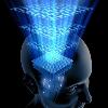 """""""Интеграция Мозга 2″. Повышение личной эффективности"""